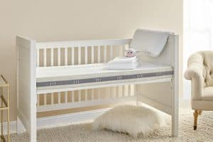Wildfern Coconut Crib Mattress with Natural Latex by Brentwood Home