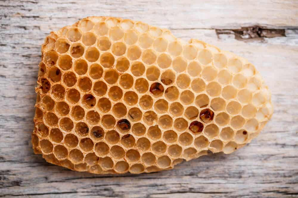This honeycomb shows the 3d shape used by the Lullaby Earth Breeze and Wisp mattress pads to make them breathable