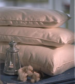 Organic Lifestyle - Organic Wool Pillow