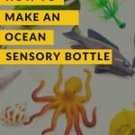 A pinterest pin with the text How to Make an Ocean Sensory Bottle. There is a background picture of toy fish and shells.