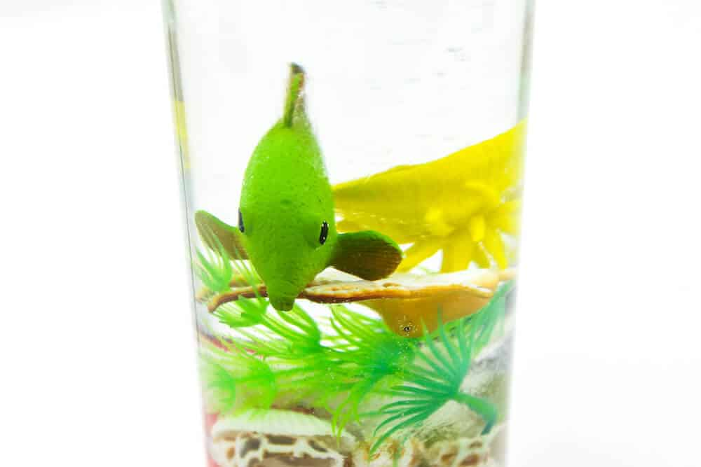A close up photo of an ocean sensory bottle for children isolated against a white background. Inside the bottle there are a number of colorful plastic fish, plants, and some seashells. A green plastic fish is shown prominently.