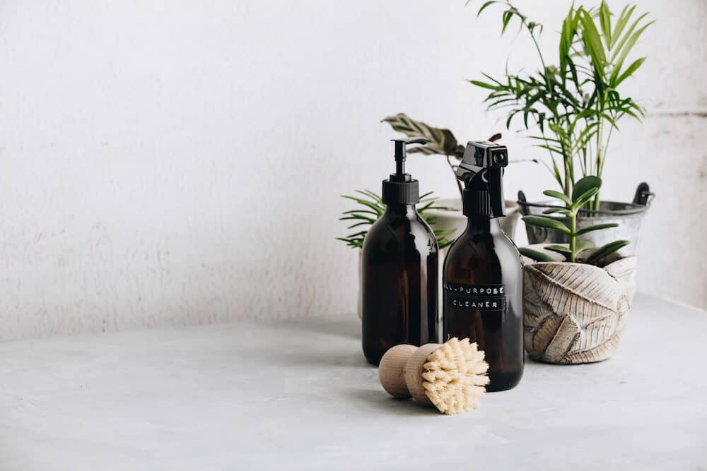 Brown cleaning products bottles, green leafy plant, and a natural bristle brush against a white background. The staging of the scene suggests they are eco cleaning products.